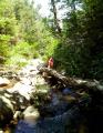 The Waterfalls of Vivara - hoja med slapovoma je kar pestra